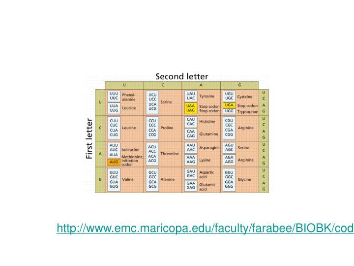 http://www.emc.maricopa.edu/faculty/farabee/BIOBK/code.gif