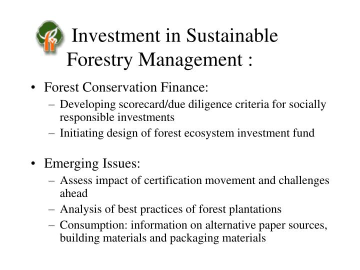 Investment in Sustainable Forestry Management :