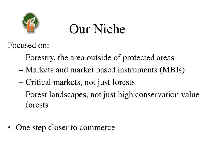 Our Niche