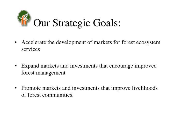 Our Strategic Goals: