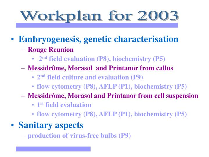 Workplan for 2003