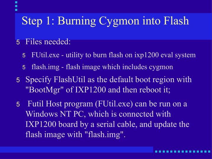 Step 1: Burning Cygmon into Flash