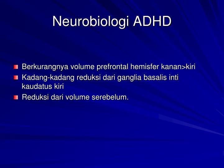 Neurobiologi ADHD