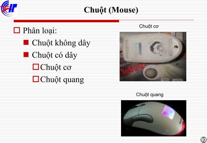 Chuột (Mouse)