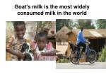 goat s milk is the most widely consumed milk in the world1