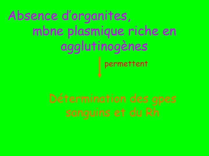 Absence d'organites,