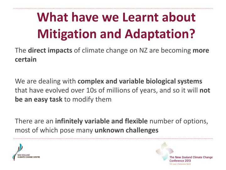 What have we Learnt about Mitigation and Adaptation?