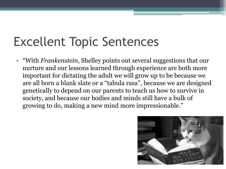 Excellent Topic Sentences
