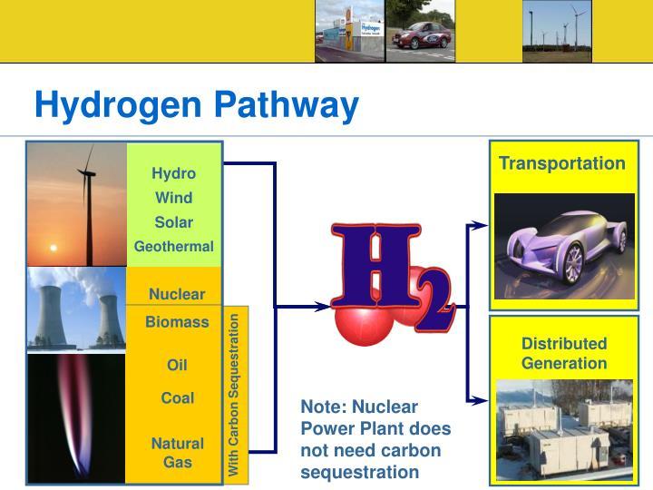 Hydrogen Pathway