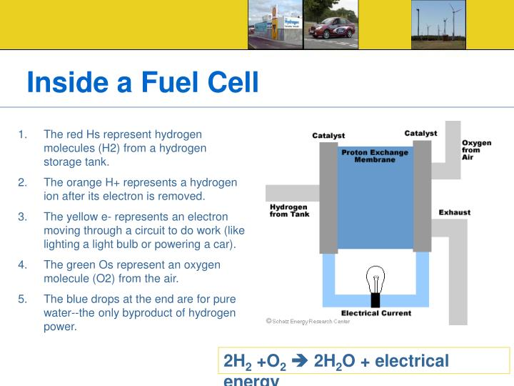 Inside a Fuel Cell