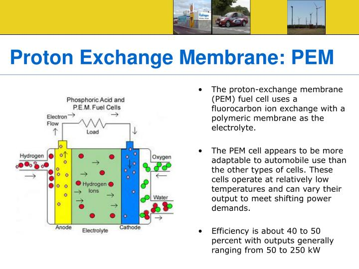 Proton Exchange Membrane: PEM