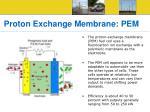 proton exchange membrane pem