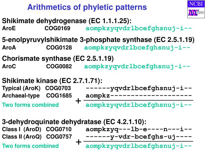 3-dehydroquinate dehydratase