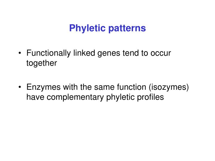Phyletic patterns
