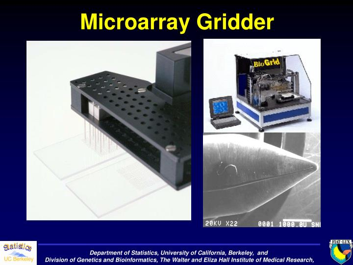Microarray Gridder