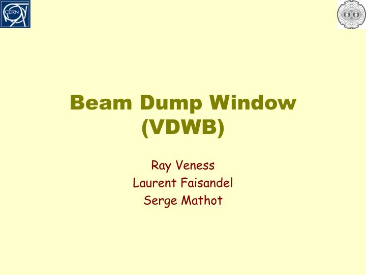 Beam Dump Window