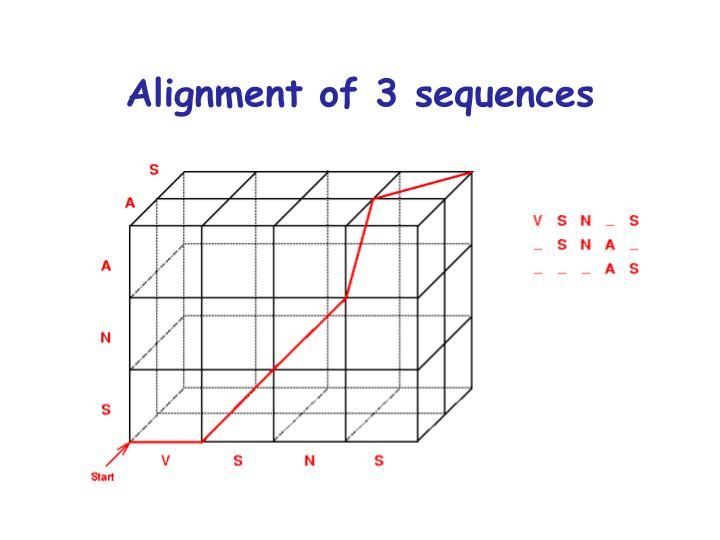 Alignment of 3 sequences