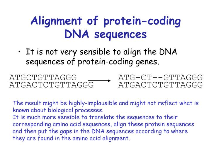 Alignment of protein-coding DNA sequences