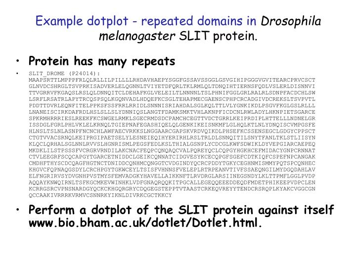 Example dotplot - repeated domains in