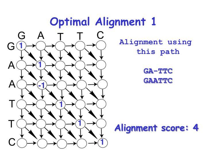 Optimal Alignment 1