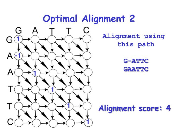 Optimal Alignment 2