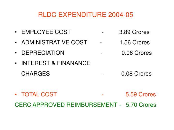 RLDC EXPENDITURE 2004-05