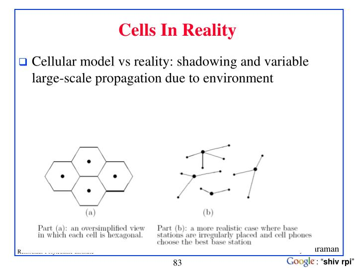 Cells In Reality