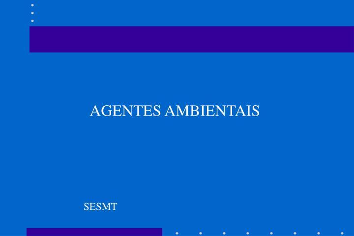 AGENTES AMBIENTAIS