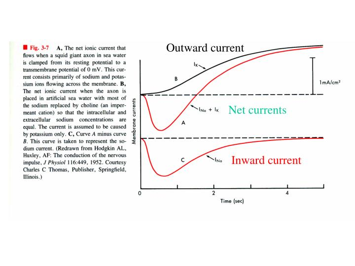 Outward current