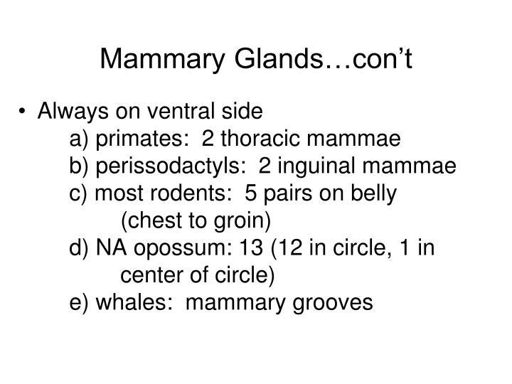 Mammary Glands…con't