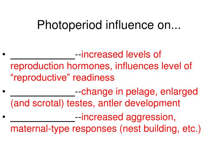 Photoperiod influence on...
