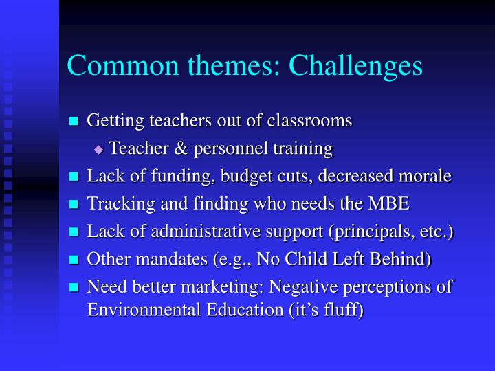 Common themes: Challenges