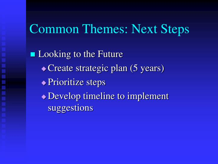 Common Themes: Next Steps