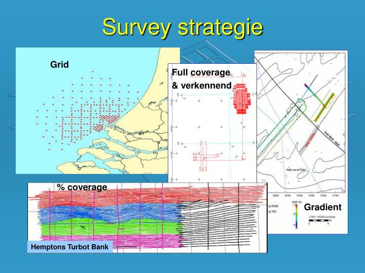Survey strategie