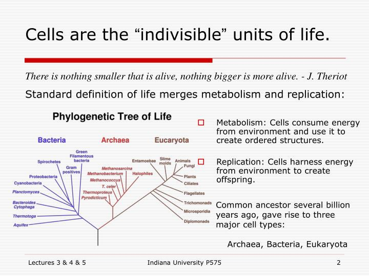 Cells are the indivisible units of life