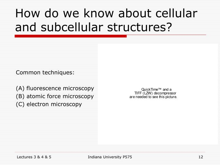 How do we know about cellular and subcellular structures?