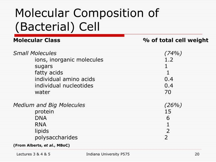 Molecular Composition of (Bacterial) Cell
