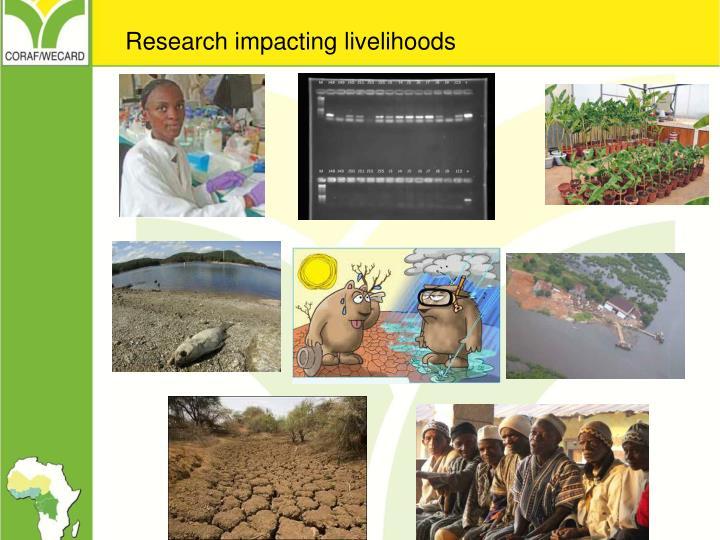 Research impacting livelihoods