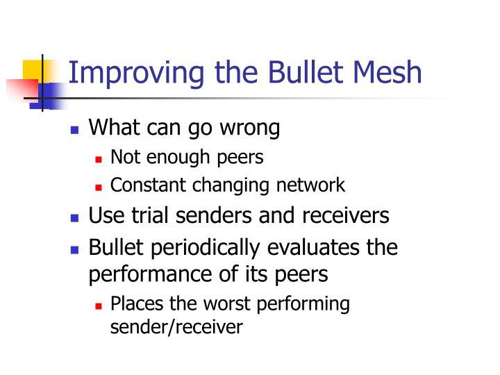 Improving the Bullet Mesh