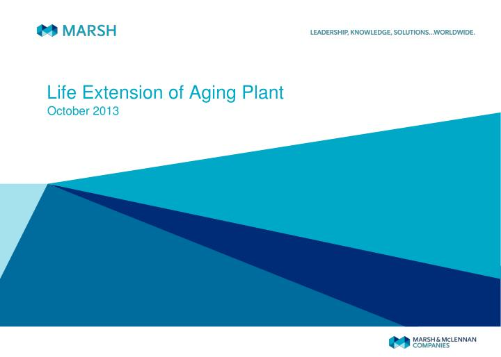 life extension of aging plant