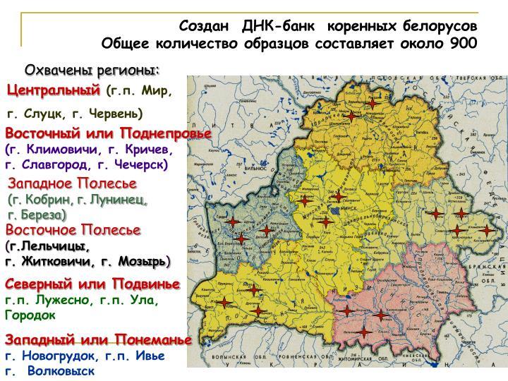 Создан  ДНК-банк  коренных белорусов