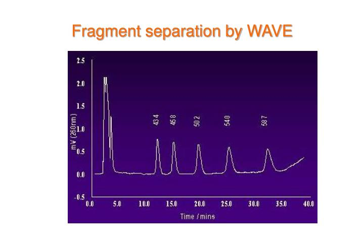 Fragment separation by WAVE