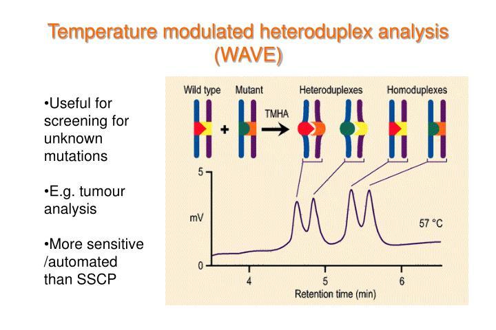 Temperature modulated heteroduplex analysis (WAVE)