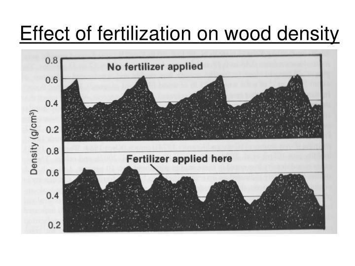 Effect of fertilization on wood density