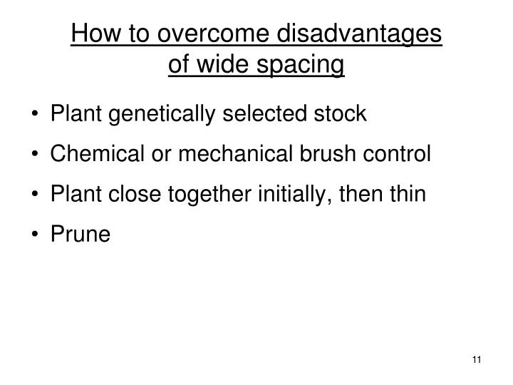 How to overcome disadvantages