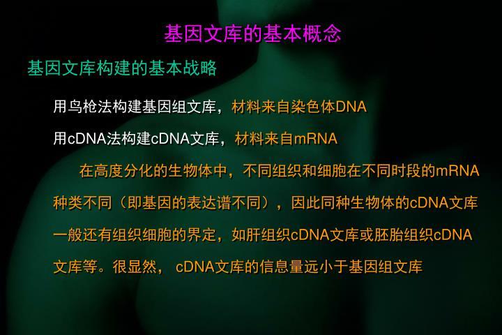 基因文库的基本概念