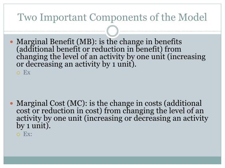 Two Important Components of the Model