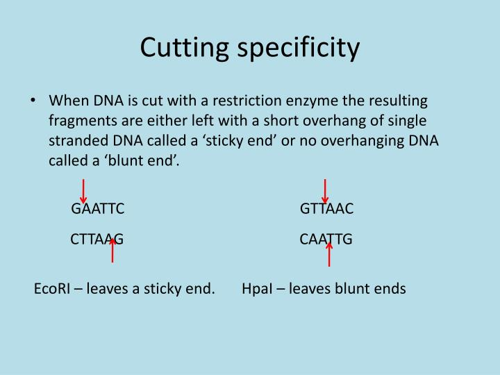 Cutting specificity