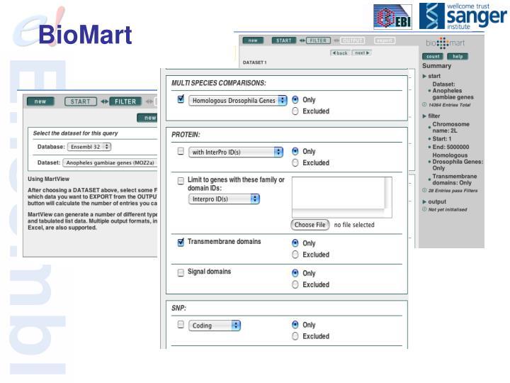 BioMart