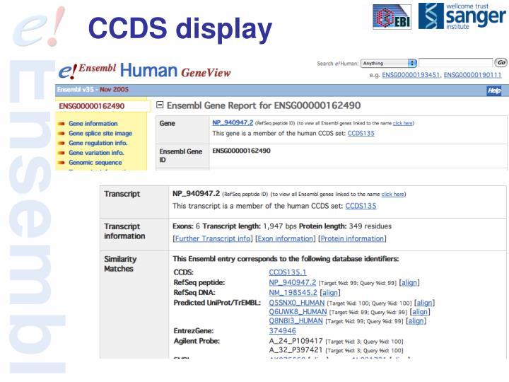 CCDS display